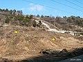 051 (l'area sopra i futuri tunnel di Cattinara) 21.jpg