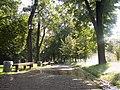 070-245 - panoramio.jpg