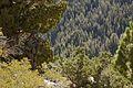 1-6 MTX 5-15 rock climbing at LZ Sardine Rock 150917-M-OU200-227.jpg
