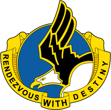 101st Airborne Division DUI