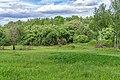 11 Остепненные склоны и балочные леса по правому берегу долины р. Осетрик.jpg