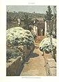 1904, Álbum Salón, Jardín de Mestre Toni, en Palma de Mallorca, Félix Mestres.jpg