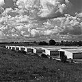1966 Domaine expérimentale de La Sapinière à Bourges-16-cliche Jean-Joseph Weber.jpg