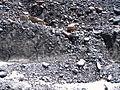 2005-08-16 Athabasca Glacier.jpg