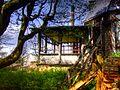 2008 04270032 Enh - Łomnica - ruina dworu z poł. XVIII w..jpg
