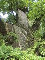 2014-09-07 14.34.48-Gros chêne de Liernu.jpg