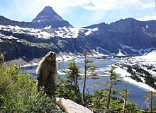 Glacier National Park U S Wikipedia