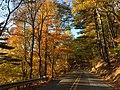 2016-10-30 17 17 15 View west along Virginia State Route 56 (Tye River Turnpike) just west of the Tye River Gap in Rockbridge County, Virginia.jpg