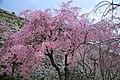 20160403 Himeji-Castle 3329 (26791572656).jpg