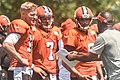 2016 Cleveland Browns Training Camp (28075215284).jpg