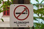"2016 Singapur, Chinatown, Park Telok Ayer, Znak ""Zakaz palenia"".jpg"