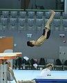 2019-06-26 1st FIG Artistic Gymnastics JWCH Men's Training 26 June Morning 2 Vault (Martin Rulsch) 15.jpg