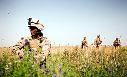 A Marine spaces out in a poppy field as three other Marines come over to wake his lazy butt up.