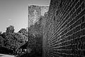 635474 Mury obronne Głównego Miasta (9).jpg