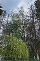 68-258-5008, Лугівський парк.jpg