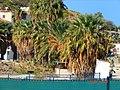 A@a Agios Raphael Paphos cy. - panoramio (10).jpg