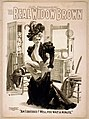 A.Q. Scammon's The real Widow Brown LCCN2014636533.jpg