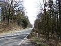 A76 Near Drumlanrig Castle - geograph.org.uk - 728141.jpg