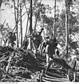 AWM 027054 16th Brigade moving along track.jpg