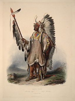 A Mandan chief 0046v