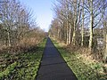 A footpath in Melrose - geograph.org.uk - 338472.jpg