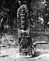 A glimpse of Guatemala - Quirigua. Stela D. North Face.jpg