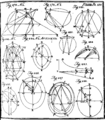 A treatise of fluxions Fleuron T093640-25.png