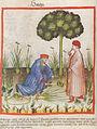 Abdun ibn Butlan.jpg