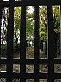 Acqui Terme (Italy) (23945050146).jpg