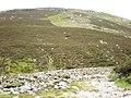Across Allt Cailtidh to Beinn Bhuidhe Crags - geograph.org.uk - 850071.jpg