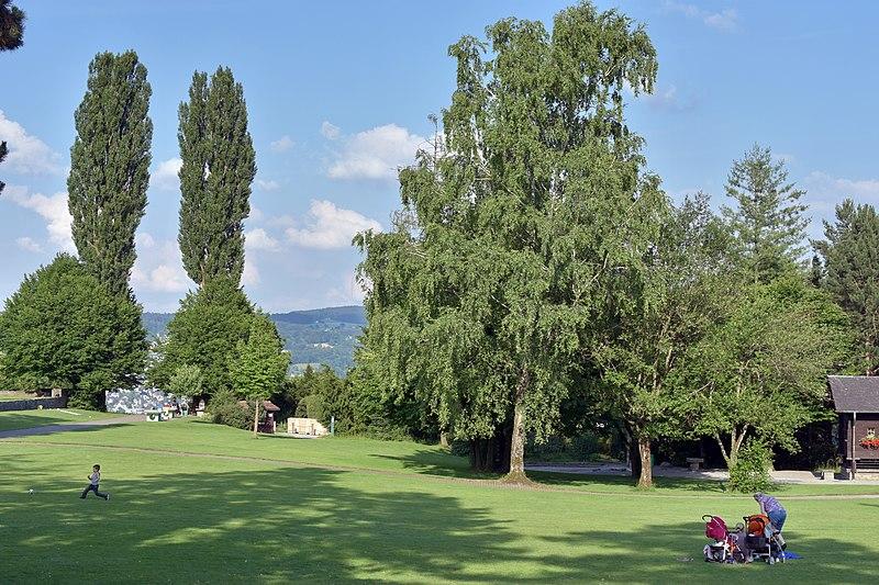 File:Adele und Gottlieb Duttweilers 'Park im Grüene' in Rüschlikon 2015-06-17 18-26-47.JPG
