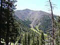 Agassiz Peak 2008 (3879580924).jpg