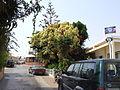Agia Napa, bar and entertainment district 26.JPG