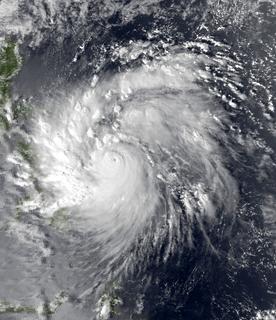 Typhoon Agnes (1984)