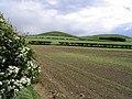 Agricultural landscape - geograph.org.uk - 427545.jpg