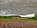 Agriculture and weather.jpg