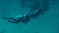 Akumal Scuba Diving (4317778876).jpg