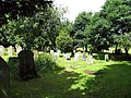 All Saints, Wreningham, Norfolk - Churchyard - geograph.org.uk - 852767.jpg