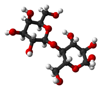 Lactose - The molecular structure of α-lactose, as determined by X-ray crystallography.