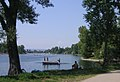 Alte Donau.jpg