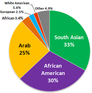 English: Ethnic composition of American Muslim...