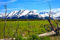 Anchorage to Seward - Turnagain Arm (5856991565).jpg