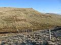 Andrew Gannel Hill - geograph.org.uk - 332544.jpg