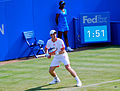 Andy Murray Queens 2012.jpg