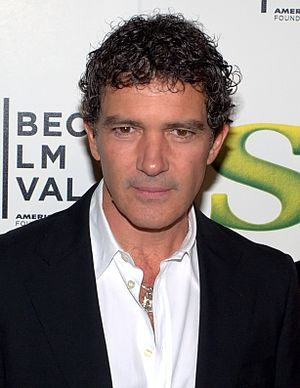 The Mask of Zorro - Antonio Banderas portrayed Zorro.