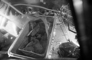 Apollo 11 Moon rocks 1.jpg