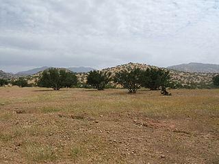 Sous Region in Souss-Massa, Morocco
