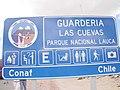 Arica077.jpg