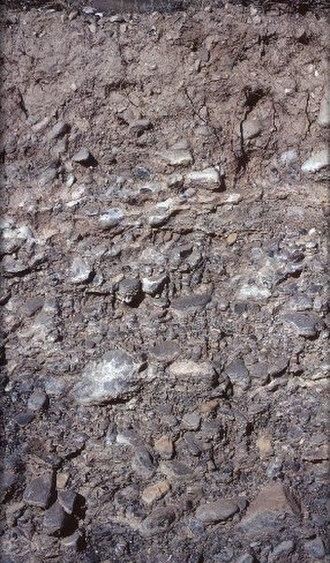 USDA soil taxonomy - Image: Aridisol