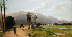 Asyut on the Nile.jpg